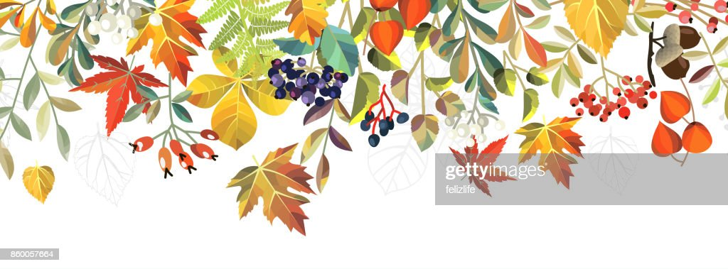 autumn background with flowers : Vector Art