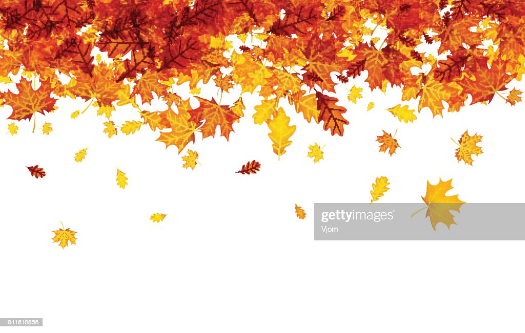Autumn background with orange leaves.