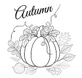 Autumn background with pumpkin and leaves for coloring book vect