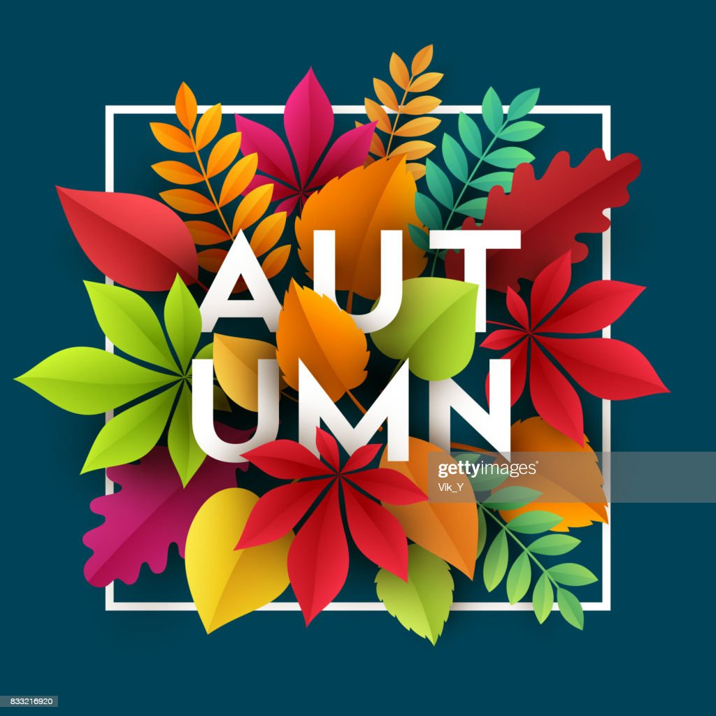 Autumn banner background with paper fall leaves. Vector illustration