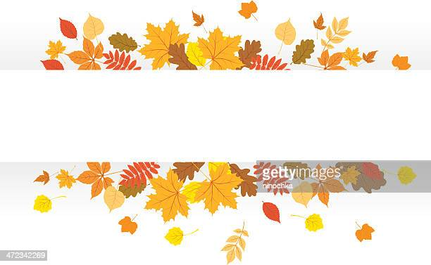 autumn banner - leaving stock illustrations