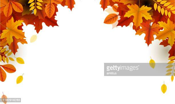 autumn beauty falling leaves frame - falling stock illustrations