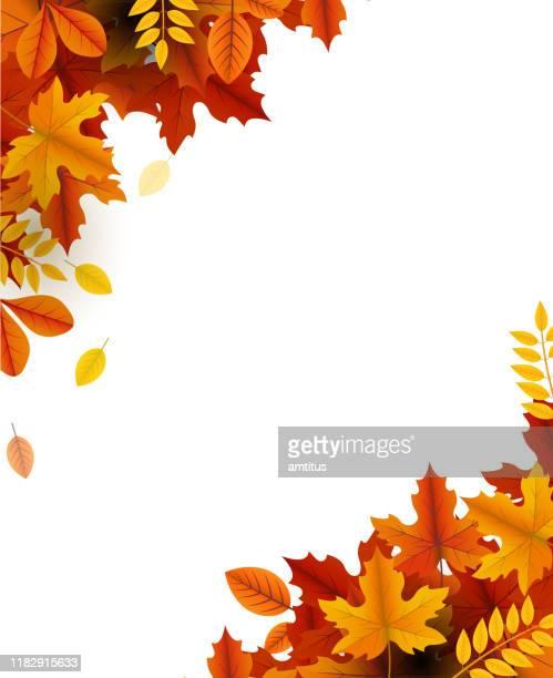 秋の美しさ - 角点のイラスト素材/クリップアート素材/マンガ素材/アイコン素材