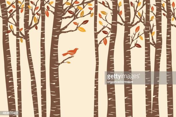 autumn bird perch - tree bark stock illustrations, clip art, cartoons, & icons