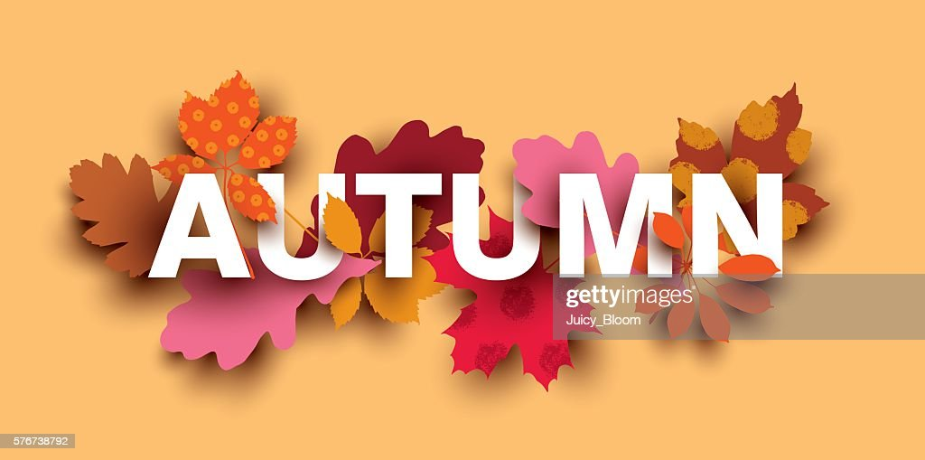 Autumn card with different plant elements.
