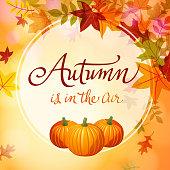 Autumn Comes with Pumpkins