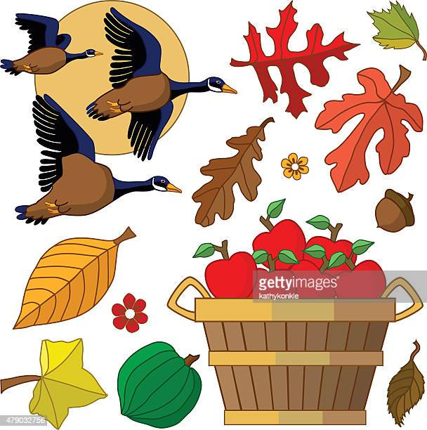 Autumn design elements with flying geese and bushel of apples