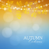 Autumn, fall background with maple, oak leaves and lights, vector