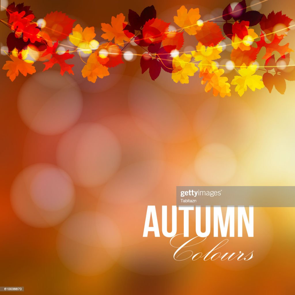 Autumn, fall card, banner. Garden party decoration. Colorful leaves.