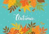 autumn fall park leaves header border background on blue texture with rain drops