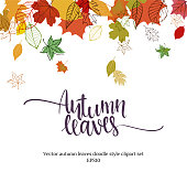 Autumn falling leaves design