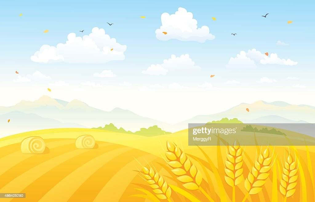 Autumn fields background