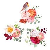 Autumn flowers mix and cute robin bird vector design bouquets