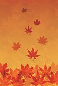 Autumn foliage in orange gradient background