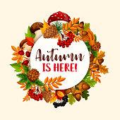 Autumn frame of fallen leaf, fruit, mushroom
