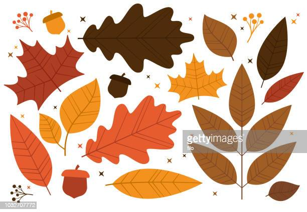 autumn leaf design elements - falling stock illustrations