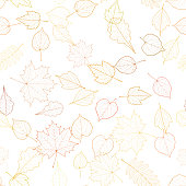 Autumn leaf skeletons template.