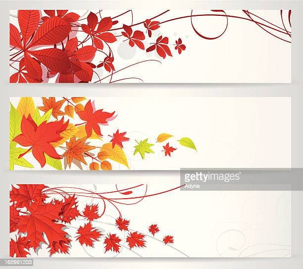 60点の紅葉のイラスト素材クリップアート素材マンガ素材アイコン