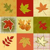 Autumn Leave Pattern