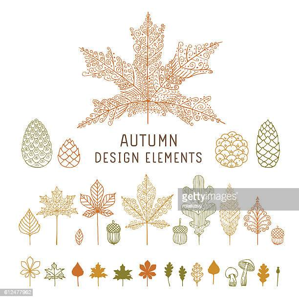 autumn leaves and cones - oak leaf stock illustrations