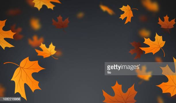 autumn leaves background - brown stock illustrations