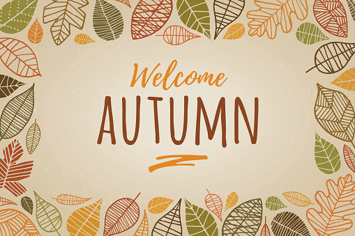 Autumn Leaves Border - Illustration - gettyimageskorea