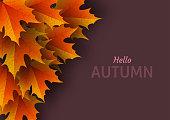Autumn leaves. Bright colourful autumn oak leaves. Template for