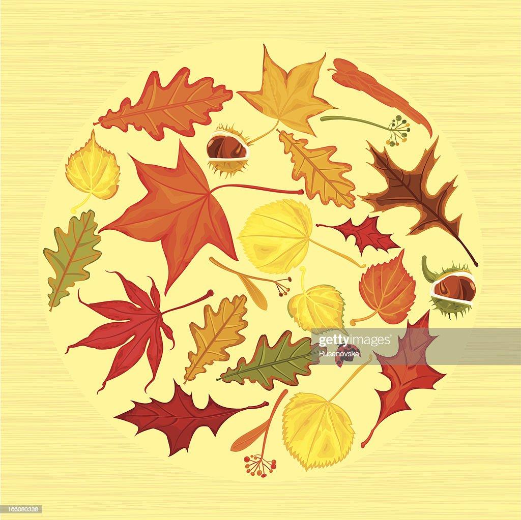 Autumn Leaves Circle