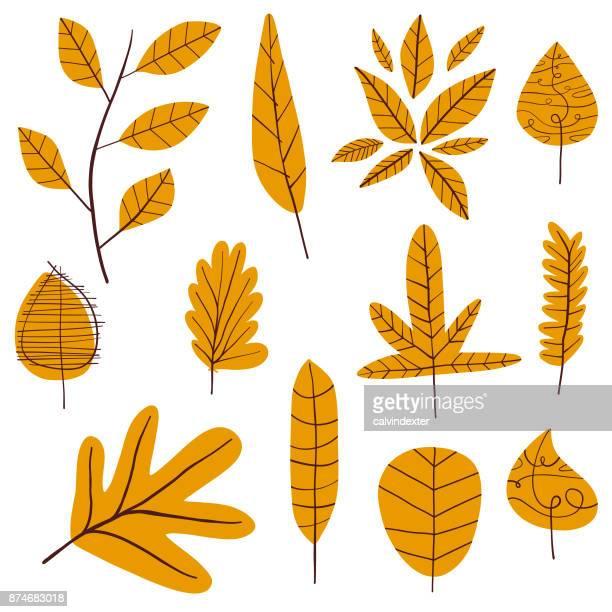 Herbst Blätter Kollektion