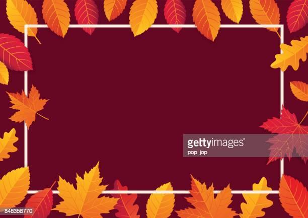 autumn leaves horizontal empty background. shopping offer poster. vector illustration template - november stock illustrations