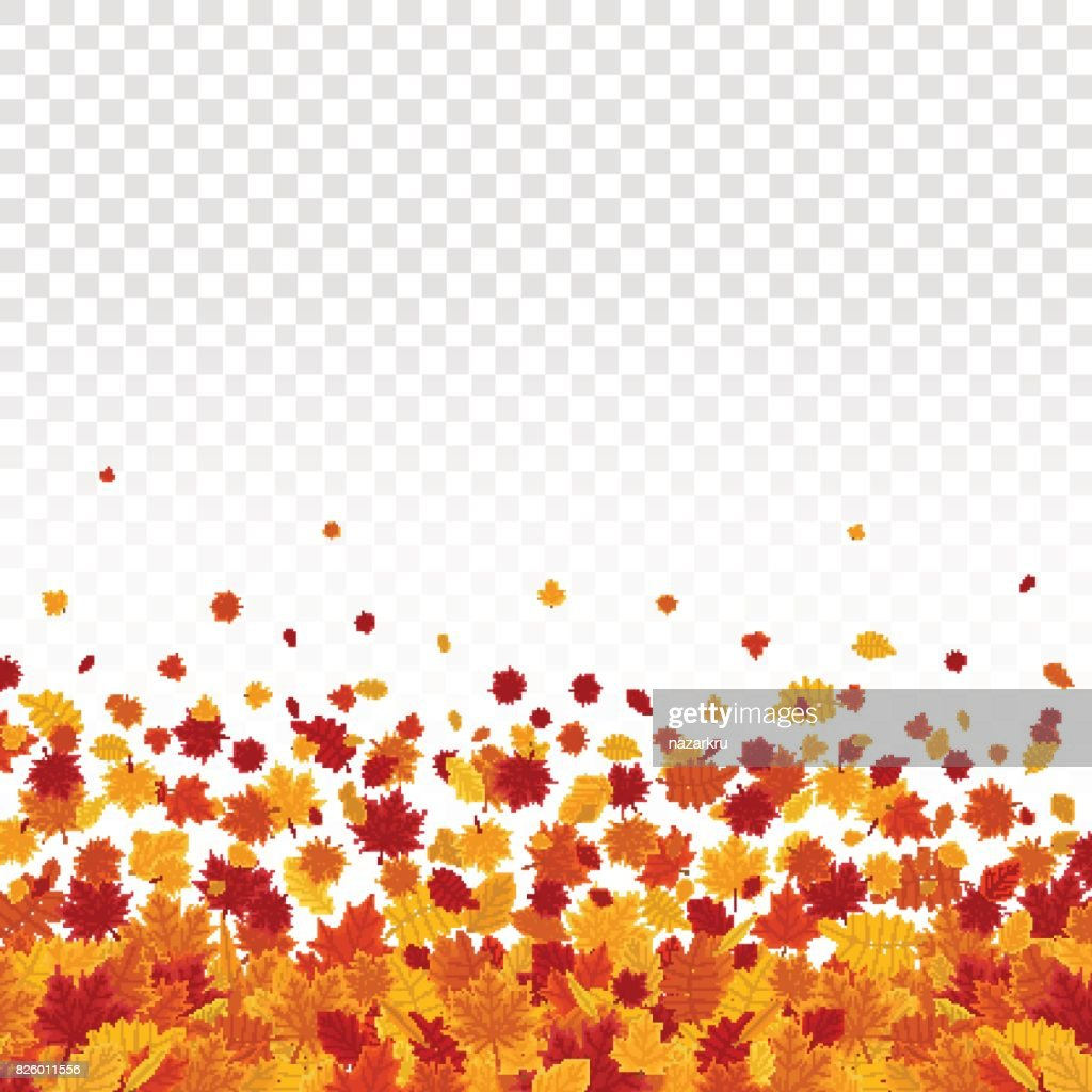 Autumn leaves on transparent background.