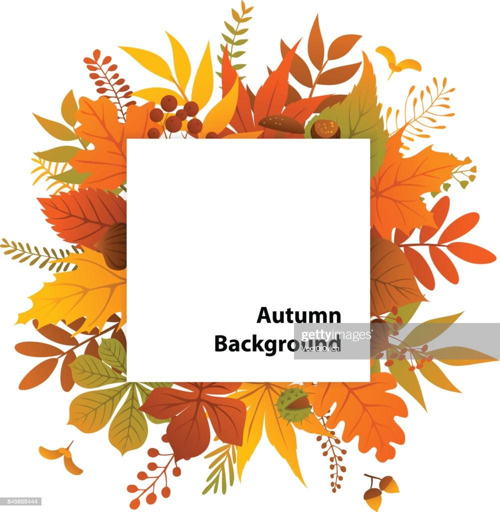 autumn leaves plants twigs square frame background