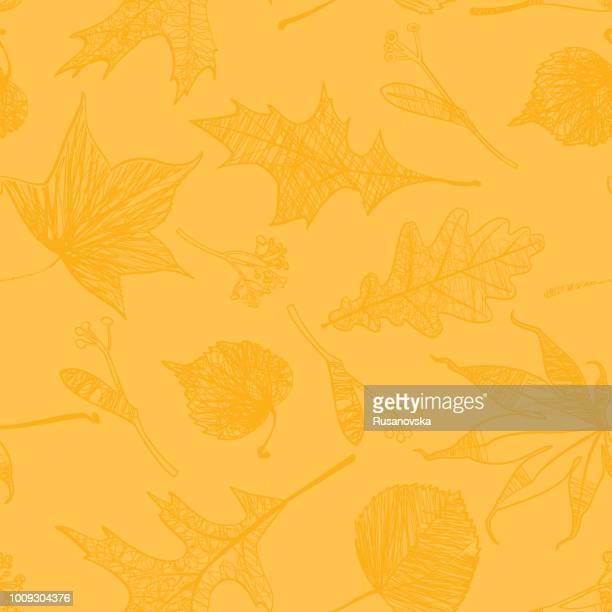 ilustraciones, imágenes clip art, dibujos animados e iconos de stock de hojas otoñales patrón perfecto. - gracias