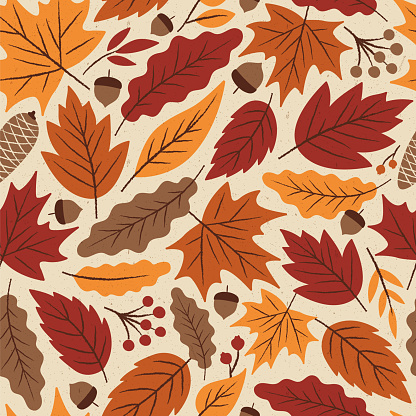 Autumn Leaves seamless pattern. - gettyimageskorea