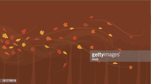 Autumn leaves swirling in a forest