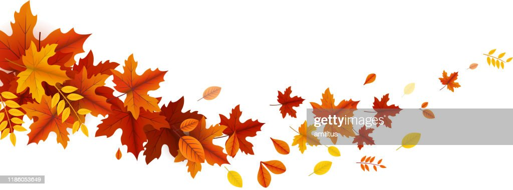 autumn leaves wave : Stock Illustration