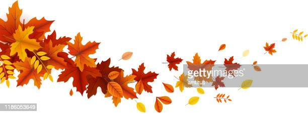 stockillustraties, clipart, cartoons en iconen met herfst bladeren golf - herfst