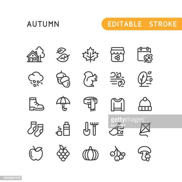 autumn line icons editable stroke - winterdienst stock illustrations