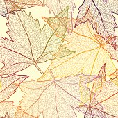 Autumn maple leaves seamless pattern. Layered vector.
