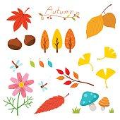 Autumn nature elements