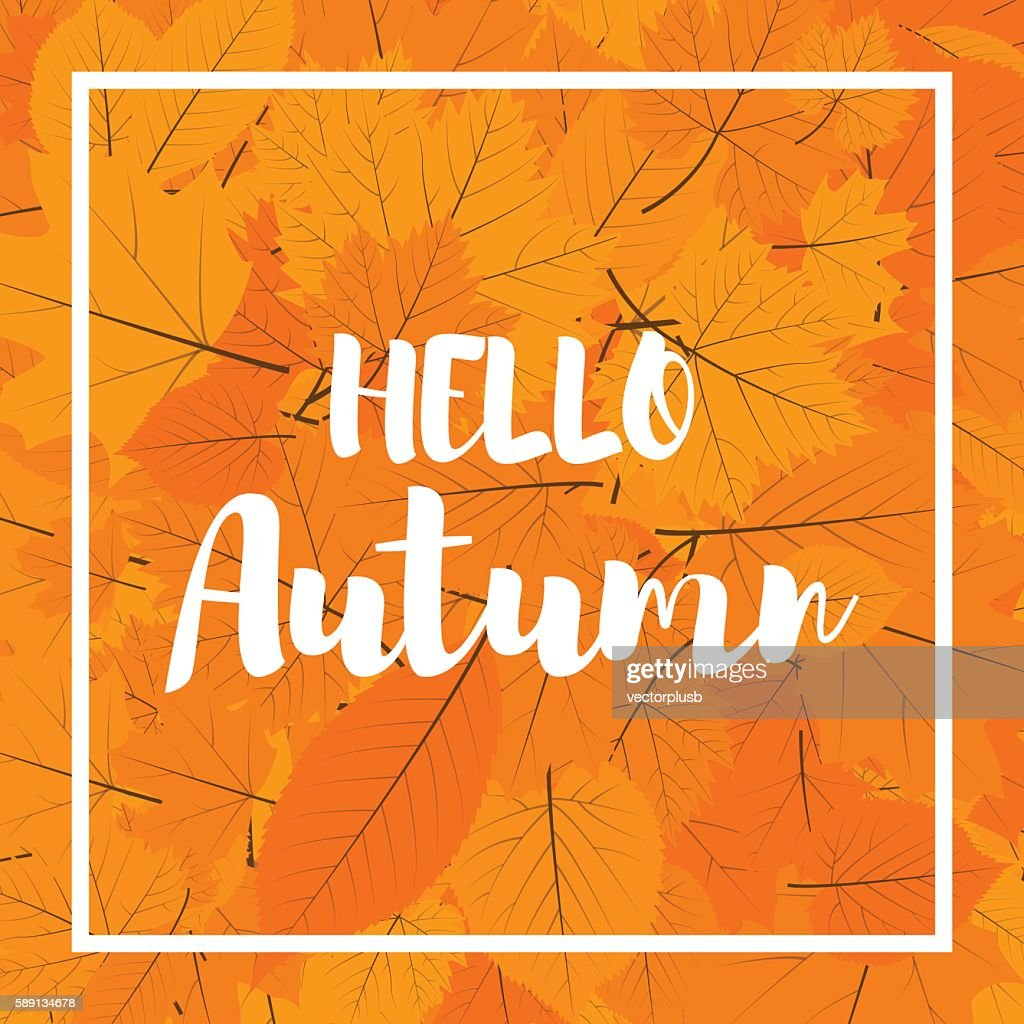 Autumn new season hello. Lettering with hand drawn letters. Label