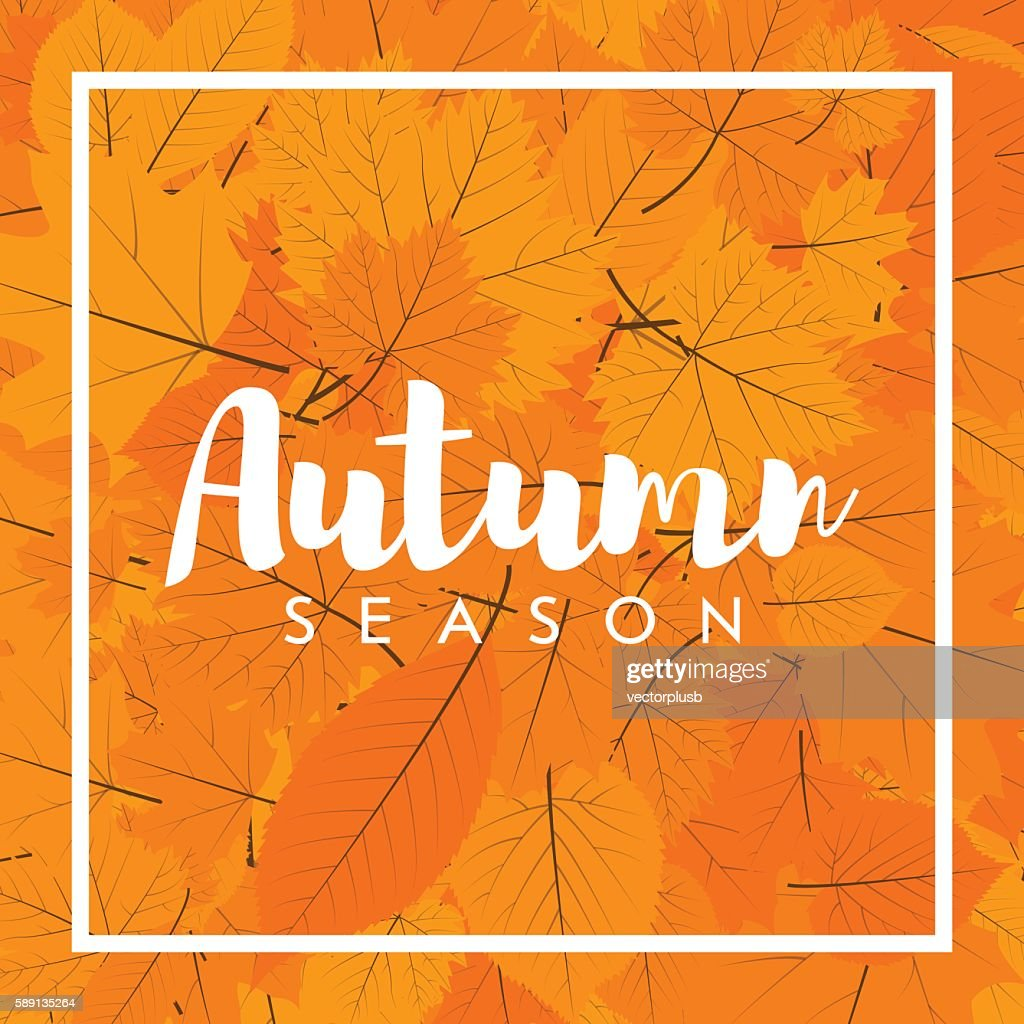 Autumn new season of sales and discounts, deals and offer.