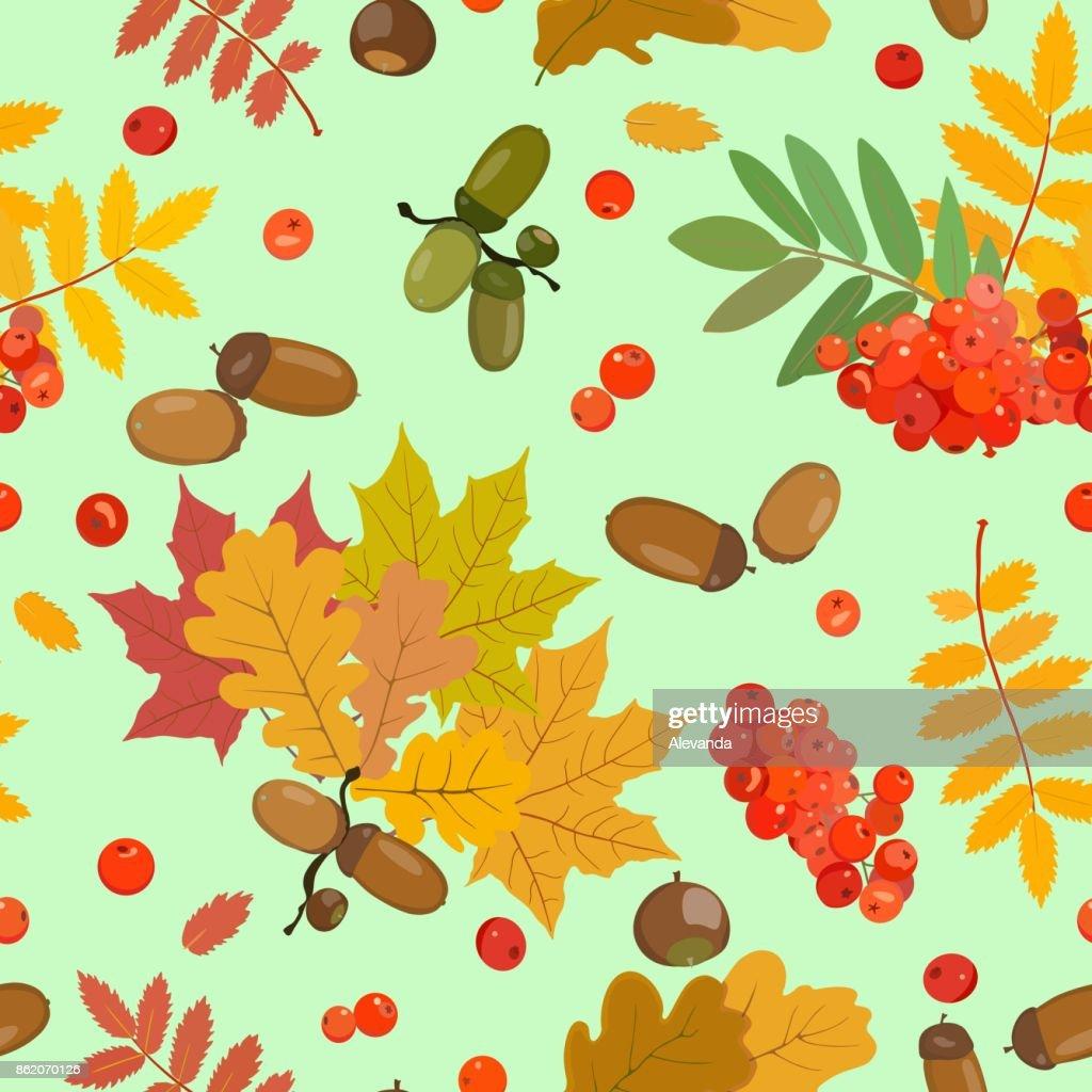 Autumn pattern with acorns, rowan, multicolored leaves.Vector illustration