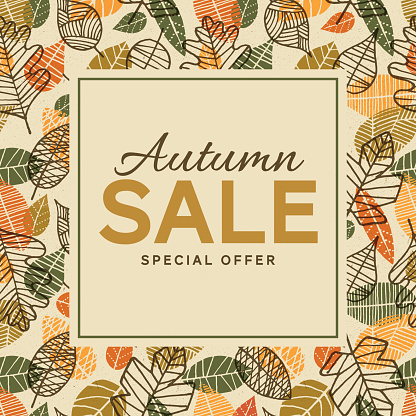 Autumn sale background template with leaves - gettyimageskorea