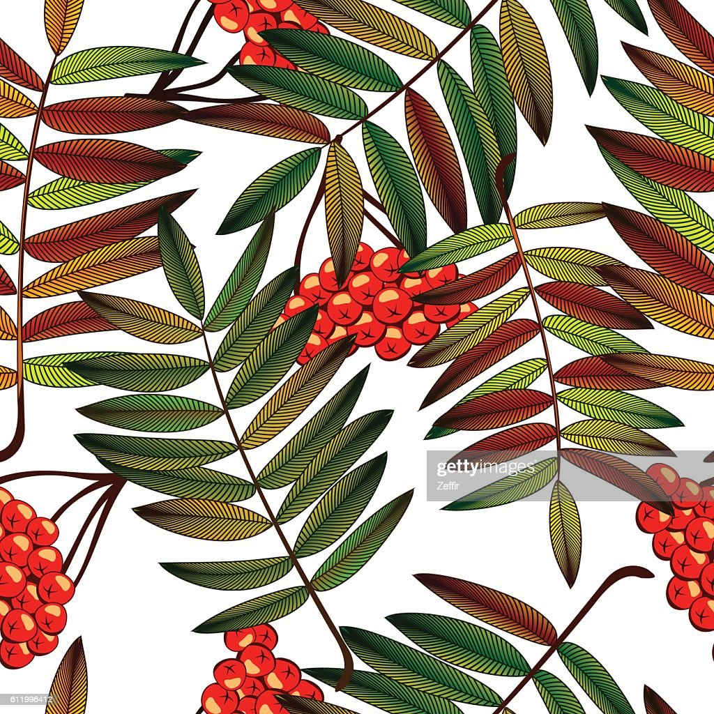 Autumn seamless pattern with rowan leaves and berries.