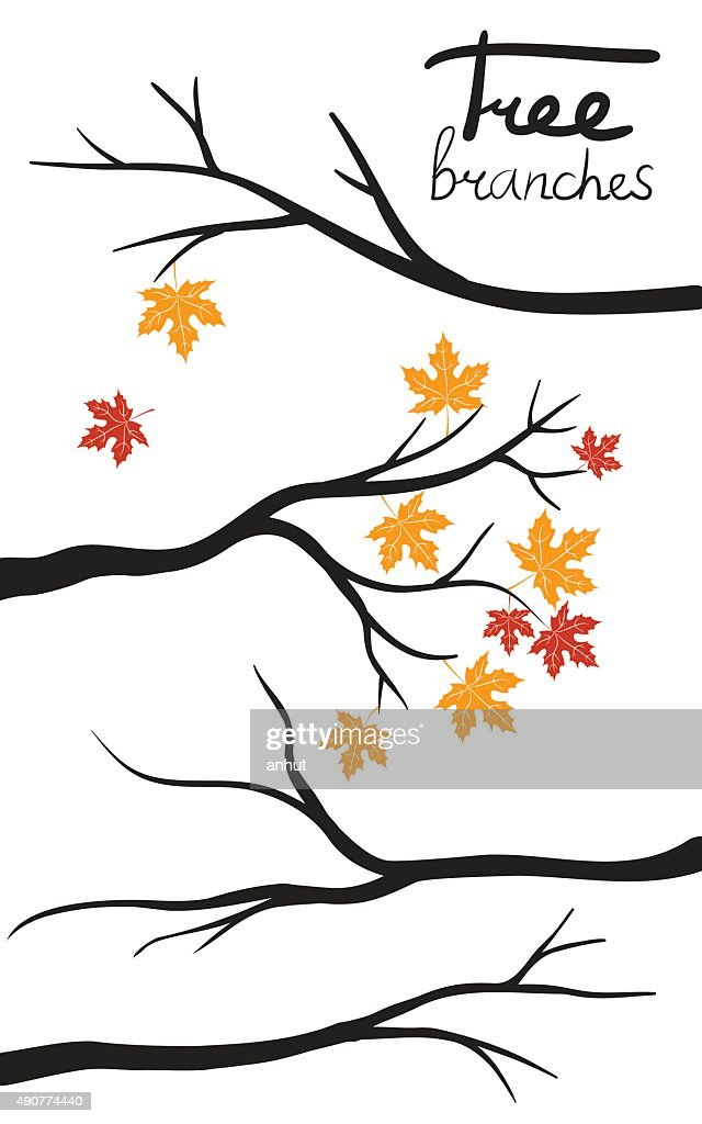 autumn Tree Branch Silhouettes