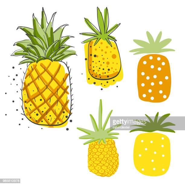 illustrations, cliparts, dessins animés et icônes de dessins au crayon avocats - ananas