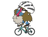Baboon ride a Road Bike