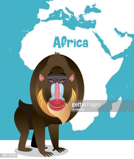 baboon - mandrill stock illustrations, clip art, cartoons, & icons