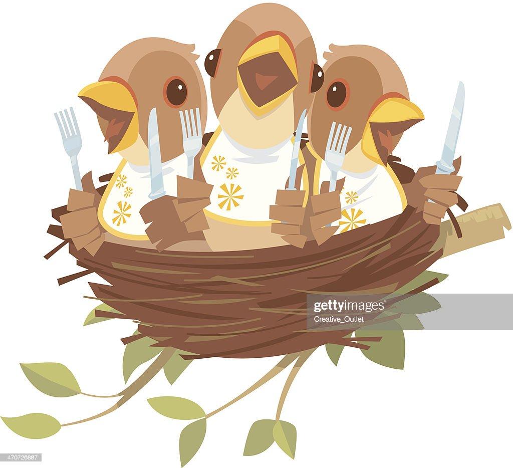 Baby Birds Nest C